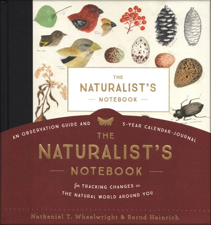 New book encourages you to record your own observations of nature - Portland Press Herald