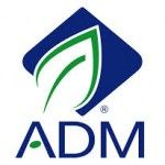 Archer Daniels Midland Company announced grants totalling US$29,500 (€26,091.658) to eight organizations in southwest Georgia. The grants were made through ADM Cares, the company's social investment program.