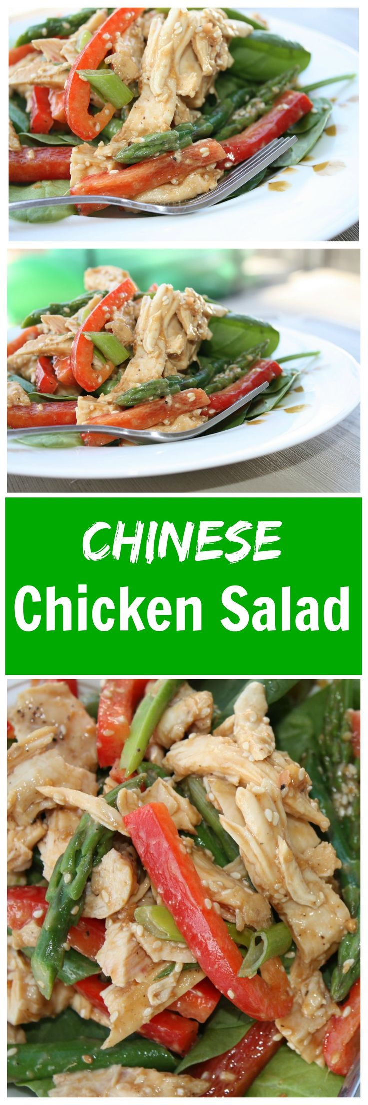 Love this Chinese Chicken Salad from Ina Garten (aka Barefoot Contessa), one of my all time favorites! Great recipe for spring! Recipe via aggieskitchen.com