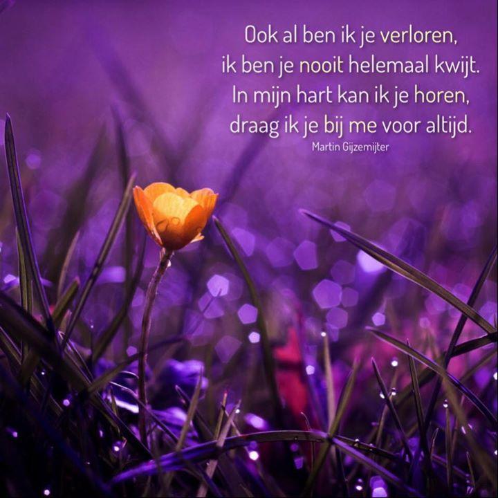Ook al ben ik je verloren, ik ben je nooit helemaal kwijt. In mijn hart kan ik je horen, draag ik je bij me voor altijd. www.dichtgedachten.nl