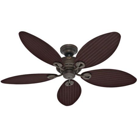 Hunter 54 inch Bayview Ceiling Fan HTR23980, Clear | Gold ...