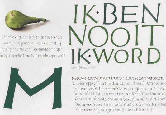 illumination, handlettering, calligraphy, illustration (detail book) joke boudens