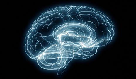 คุณทราบหรือไม่? หากคุณไม่ออกกำลังกายสมองเสียแต่วันนี้ ภาวะสมองเสื่อม(Dementia) อาจมาเยือนในไม่ช้า…หากรู้วิธีดูแลและป้องกันเสียแต่วันนี้ เราจะมีสมองสดใส คิดอะไรก็บรรเจิด นำพาชีวิตพบแต่สิ่งดีดีมาเรียนรู้สมองกัน