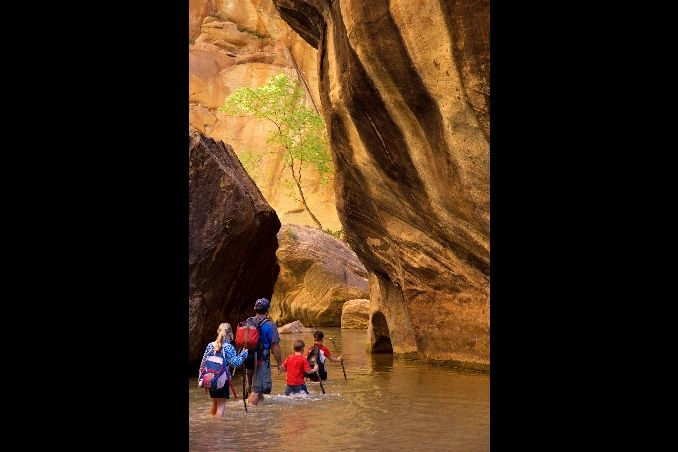 Zion National Park - Things to Do in Zion - Utah Tourism | Visit Utah