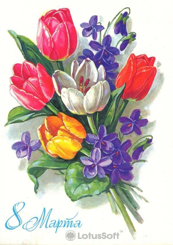 Советские открытки тюльпаны, прикольные