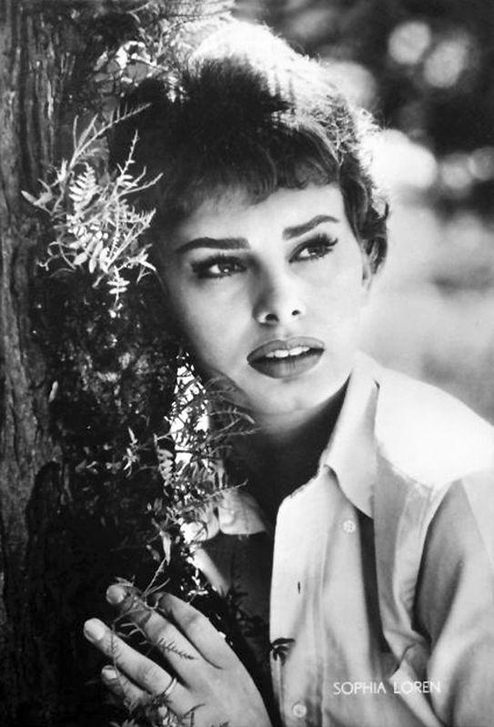 Sophia Loren Ugly 189 best Sophia Loren ...