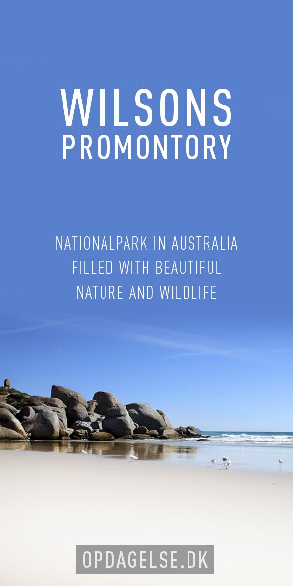 Wilsons Promontory --- The post is in danish. Choose your own language in the bottom of the right sidebar