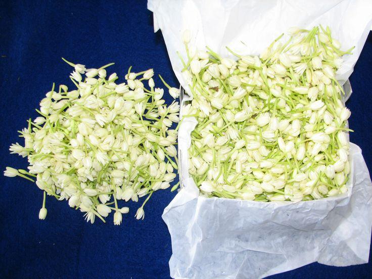 Mullai loose flowers Wedding supplies, Hindu wedding