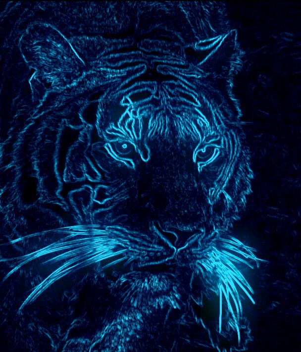 17 best images about neonglow on pinterest glow neon