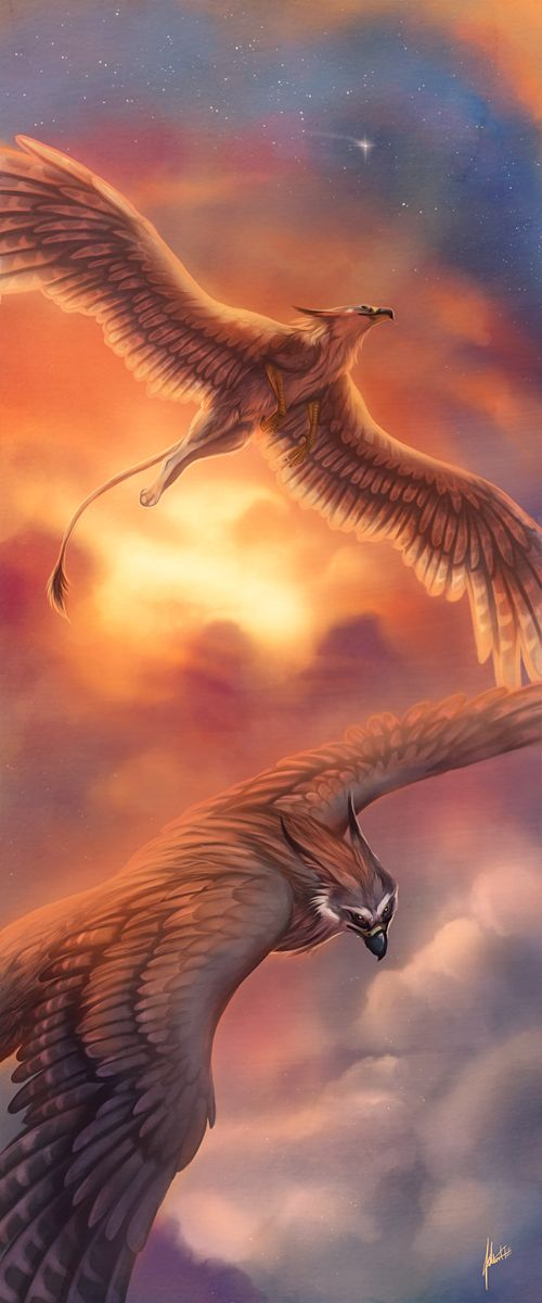 ((Open RP be the human, any gender)) There were lots of mythical creatures around but I was just a human. However, the Griffins had always fascinated me and I would come to the edge of the beach to watch them fly every morning even if it was early. I had come down just like every morning when one of the regal creatures circled down toward me.