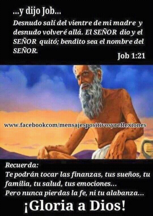Job 1:21