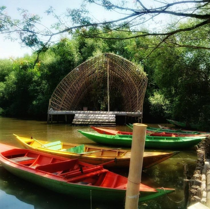 Perahu Wisata Hutan Mangrove Pik Jakarta Utara