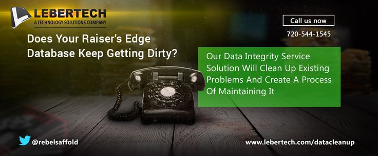 Raiser's Edge Data Integrity System | Lebertech