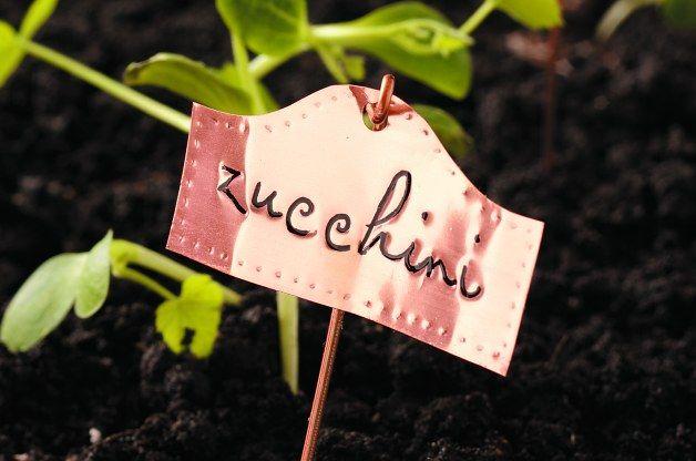 Garden Plant Markers Diy