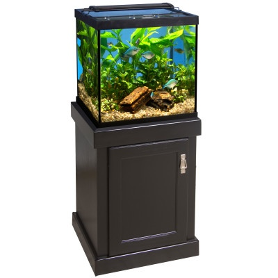 29 best images about Aquarium on Pinterest | Aquarium ...