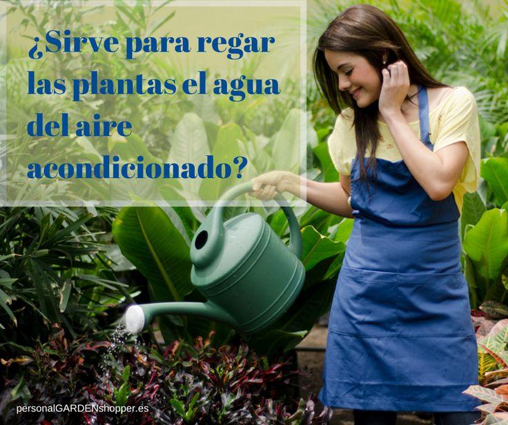 Agua Del Aire Acondicionado Sirve Para Regar Las Plantas El Agua Que Gotea Del Aparato De Aire Acondicionado Es Buena Para Regar Garden Outdoor Garden Hose