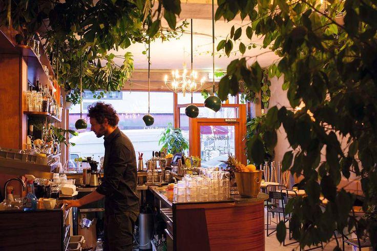 Torgata Botaniske har åpnet floral cocktailbar med vannplanter.