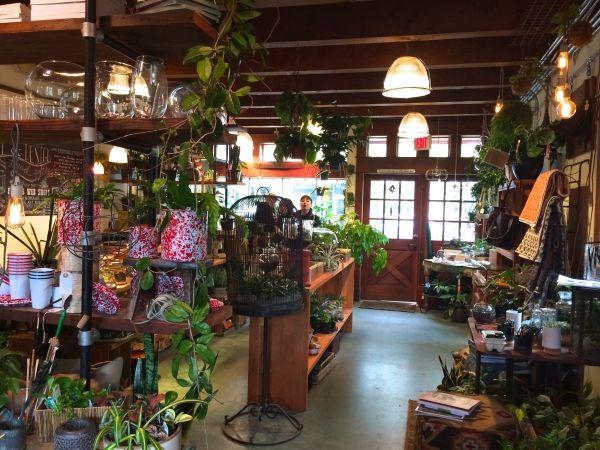 retail garden center ideas 1263 best baby got backyard images on pinterest plants
