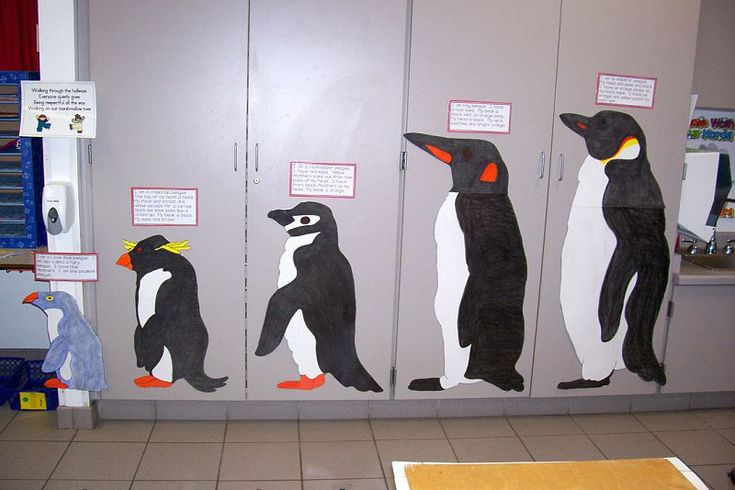 penguins-measurement