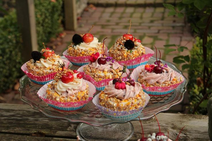 Gebakjes en Cupcakes - Vogeltaart.nl Vogeltaarten Boek....hoe maak ik een natuurlijke vogeltaart