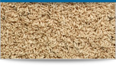Frieze carpet - Frieze carpets are a twisted cut pile suited for high traffic areas. #carpet
