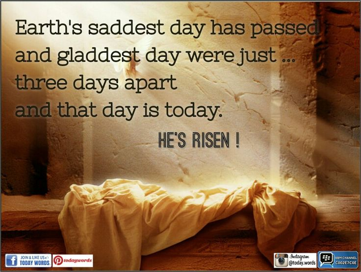 •○Earth saddest day has passed, and gladdest day were just..three days apart; and that day is today. He's risen ! Happy Passover!
