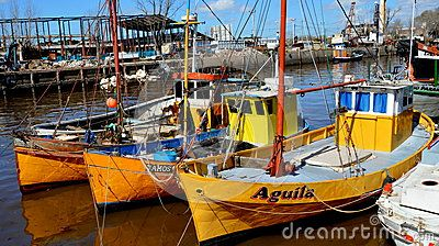 Boats in the harbor of Tigre, Buenos Airesn