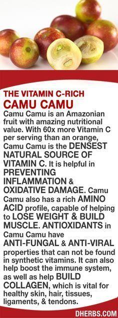 Best  Amino Acids Ideas On   Bodybuilding Diet
