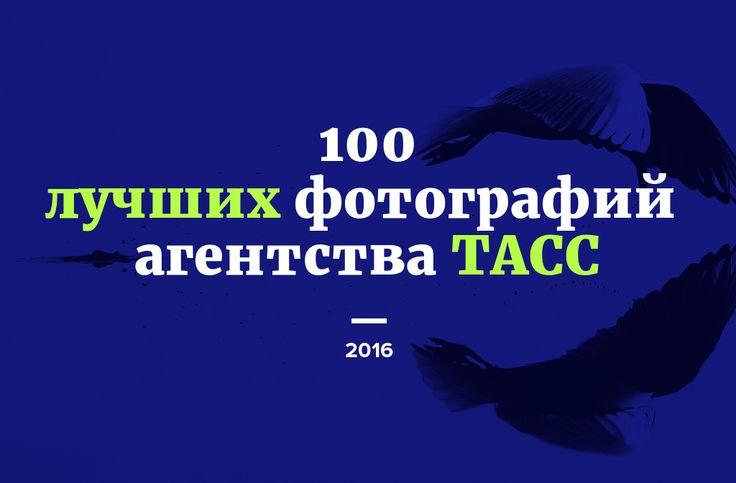 100 лучших фотографий агентства ТАСС. Часть 1