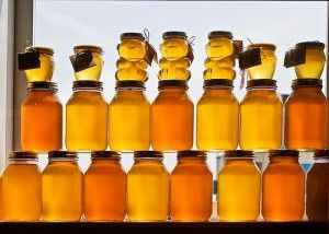 How to Store Honey in Your Food Storage - Cox's Honey