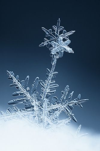awesome to think that each and every snowflake is unique. Just like God created…