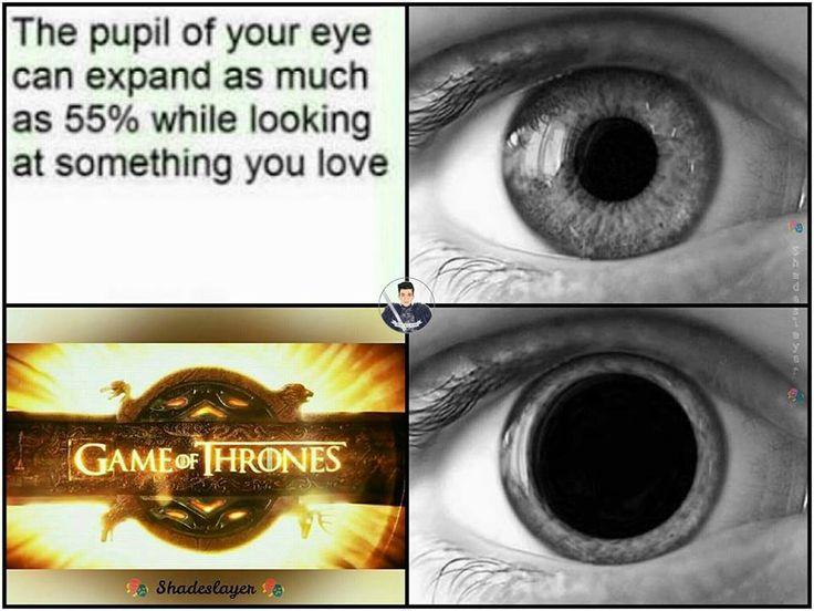 f33e2943927b826e4cd5e50f19c178c9 game of thones game of thrones funny 390 best game of thrones images on pinterest valar dohaeris, valar