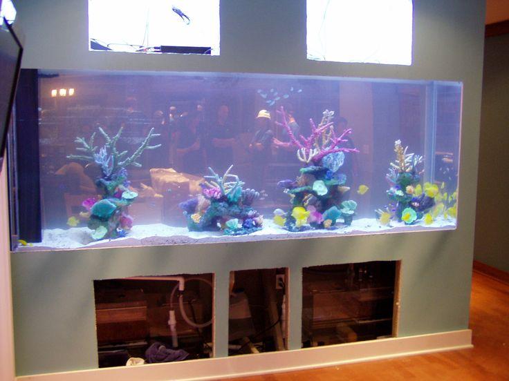 Built in aquarium built in aquarium pinterest for Built in fish tank