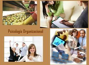 La Psicología Organizacional se refiere a la aplicación de los conceptos, conocimientos, habilidades, técnicas y metodologías propias de la psicología, aplicados en el ambiente laboral.