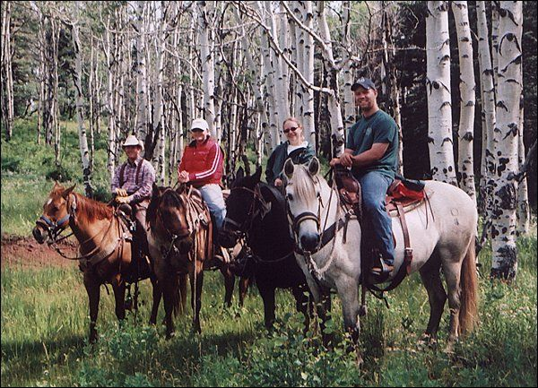 When it comes to providing the best hunting experience possible, elk hunting outfitters tend to offer a number of other options.