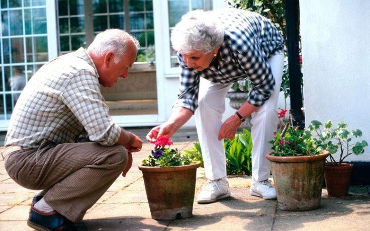 La actividad física se relaciona con mayor volumen de materia gris, incluso si hay alzhéimer