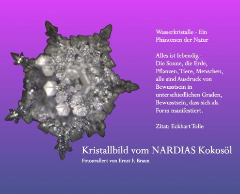 Kristallbild von Nardias Kokosöl, kalt gepresstes Kokosnussöl.