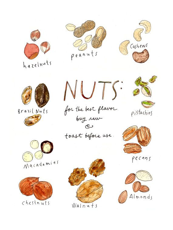 Nuts! This print celebrates the glory of the nut. Featuring the hazelnut, the peanut, cashews, pistachios, pecans, almonds, walnuts, chestnuts, the macadamia nut and the Brazil nut. The print is a 9x12 digital reproduction of an original watercolor + pen and ink illustration. It is printed on 100lb EcoSilk Archival Paper with soy-based inks and individually signed by the artist. It ships flat with white acid-free board in a plastic sleeve and arrives frame-ready. Check out all the 9x12 Fo...