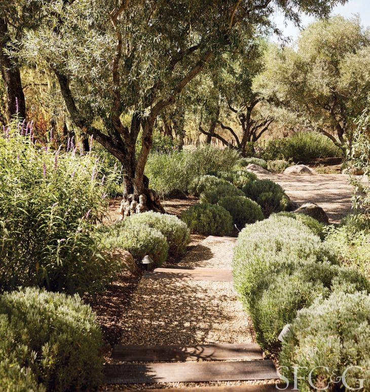 quelle inspiration pour le jardin sec un nouveau jardin gardens landscaping and garden ideas - Mediterranean Garden