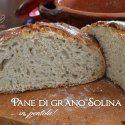 pane in pentola con grano solina http://www.natosottoilcavoloblog.com/2014/08/pane-di-grano-solina-senza-impasto-in.html#sthash.Uew8G3bU.dpuf