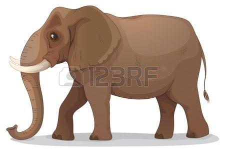 illustratie van een olifant op een witte achtergrond