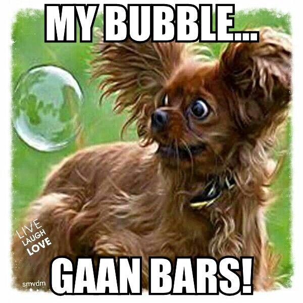 My bubble gaan bars