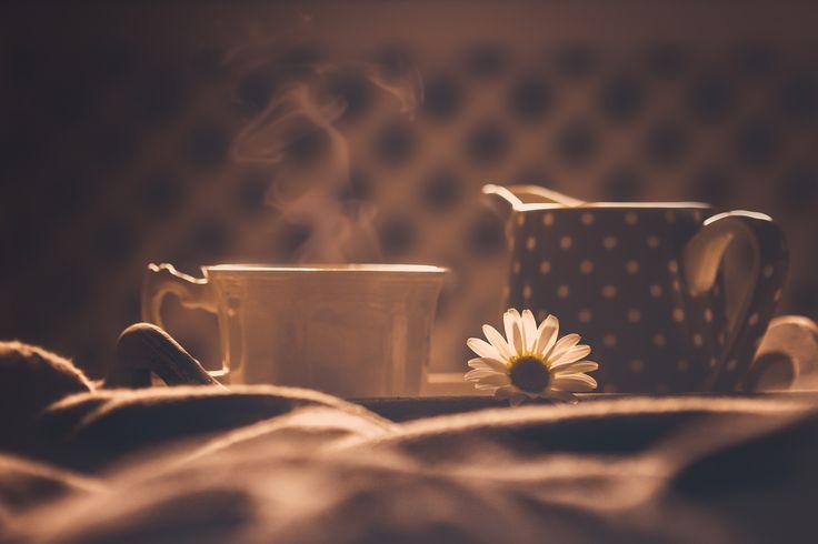https://flic.kr/p/FnDZff | At five o'clock... | Hoy mi café de las cinco es para ti, y espero que sean muchos más, porque lo bien que se está en tu compañía... Muchisimas felicidades Anita!!!! te deseo lo mejor, este y todos los días, disfruta!!!! mmmmuac... ♥️♥️♥️