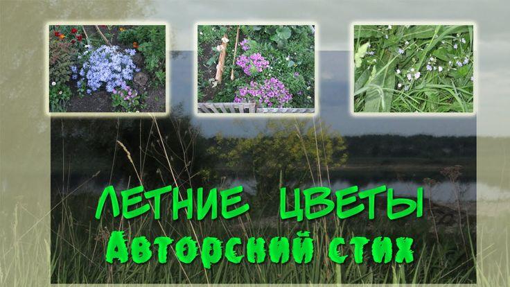 Летние цветы Красивый авторский стих Хлюбцева Юлия