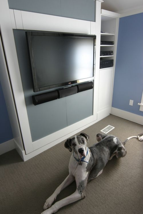 Murphy bed with tv (love this concept)