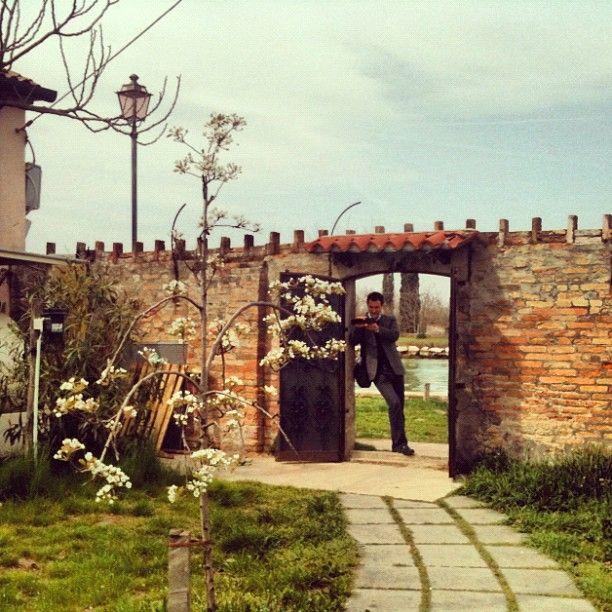 Ed eccoci a Venissa, il ristorante che produce il vino autoctono della Laguna di Venezia, fatto con l'Uva d'Oro, a Mazzorbo