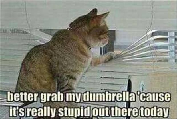 Funny Pictures Of The Day - 69 Pics