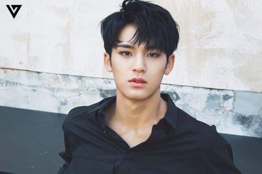 """Pledis17 Mingyu - I've had this open for a few minutes trying to save it, but all I can keep thinking is, """"Fuckkkk.. fuck fuck fuck fuck...."""" .........."""