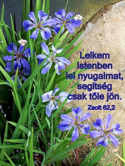 Zsoltár 62,2