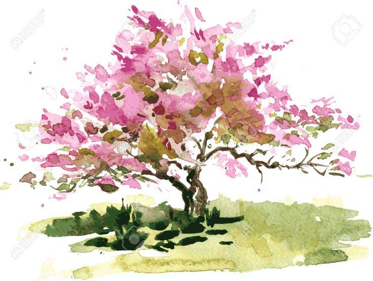 fiore di ciliegio disegno albero da acquerello, acquerello schizzo di fioritura albero di mele, pittura giardino, disegnato a mano di vettore arte